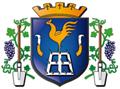 Logo Ville de Galluis