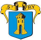 Logo Ville de Saint Prix